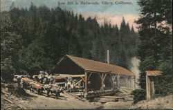 Saw Mill in Redwoods
