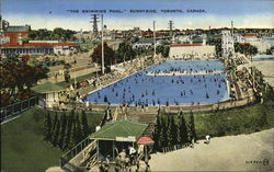 The Swimming Pool, Sunnyside