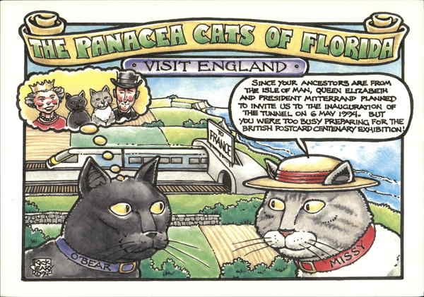 The Panacea Cats of Florida Visit England