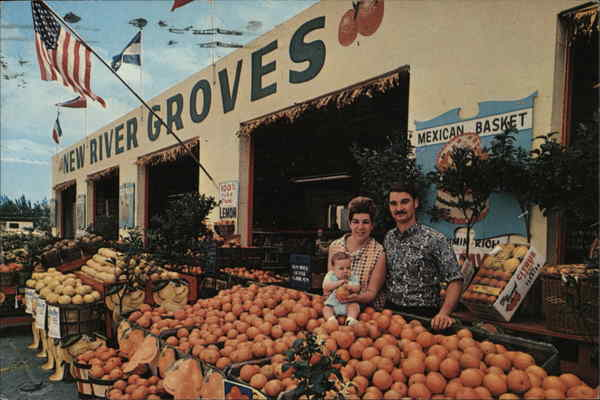 Send Citrus Gifts To Your Friend from New River Groves! Fort Lauderdale Florida