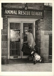 Animal Rescue League Postcard