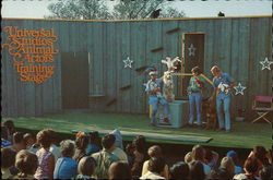 Animal Actors Training Stage - Universal Studios