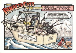 The Panacea Cats of Florida: National Postcard Week 1996