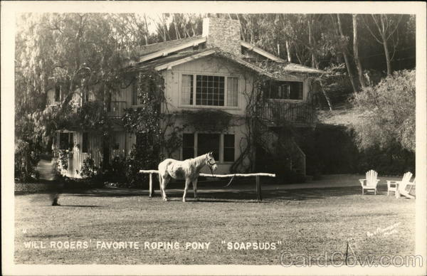 Will Rogers' Favorite Roping Pony Soapsuds Horses