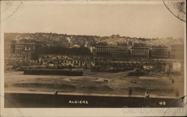View of City Algiers Algeria Africa