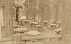 Outdoor Eating Place, Mariposa Grove