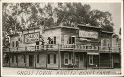 Ghost Town - Knott's Berry Farm, Sign: Calico Saloon