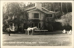 "Will Rogers' Favorite Roping Pony ""Soapsuds"""