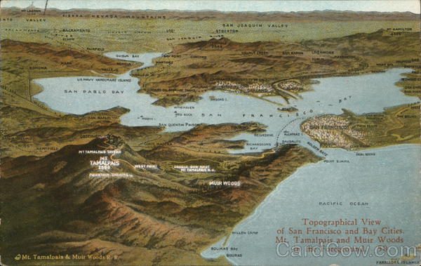 Topographical Map of San Francisco Bay Area California Postcard