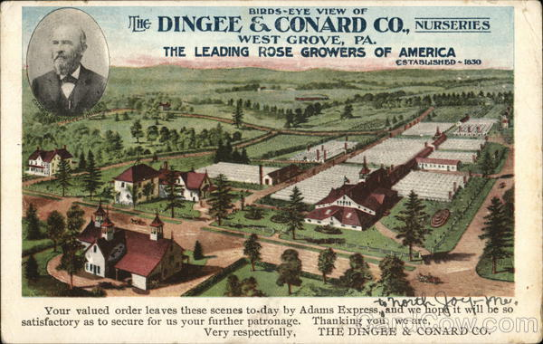 Dingee & Conard Co. Nurseries West Grove Pennsylvania