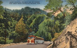 Smoky Mountain Trailways Bus