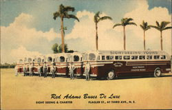 Red Adams Sightseeing Buses