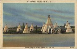 Wigwam Village No.1
