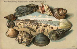 Beach Scene showing Steeplechase and Steel Piers