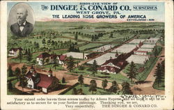 Dingee & Conard Co. Nurseries
