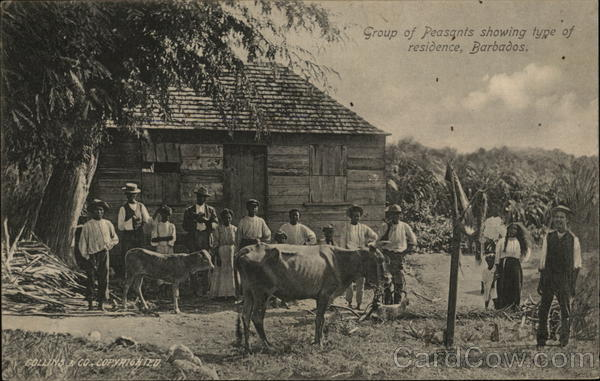 Group of Peasants showing type of residence, Barbados