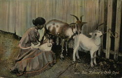 Goat Nursing a Child, Cuba