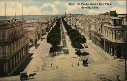 El Prado, Bird's Eye View