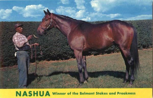 Nashua Winner of the Belmont Stakes Horses Horse Racing