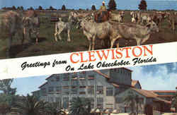 Greetings From Clewiston