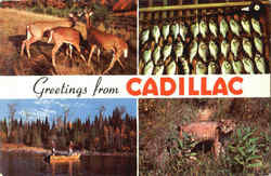 Greetings From Cadillac