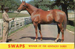 Swaps Winner of the Kentucky Derby