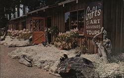 Mendocino Coast Botanical Gardens - Gift Shop