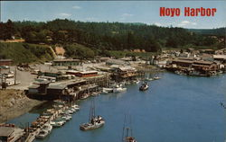Noyo harbor