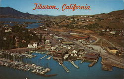 Tiburon Yacht Basin from the Air