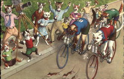 Dressed Cats in Bike Race