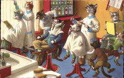 Cat Barbershop