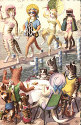 Dressed Cats at the Beach