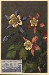 Aquilegia Califoraica Hyrids Bouquet