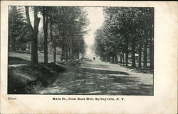 Main St., from East Hill, Springville, N.Y.