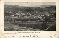 Birdseye View of Livingston Manor Postcard