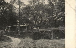 Bridge Scene At Naperville Park