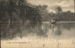 On the Caloosahatchee River