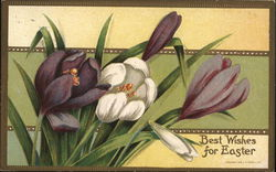 Best Wishes for Easter Postcard