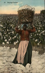 Drying Cotton