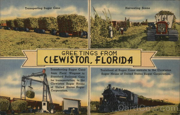 Greetings from Clewiston Florida