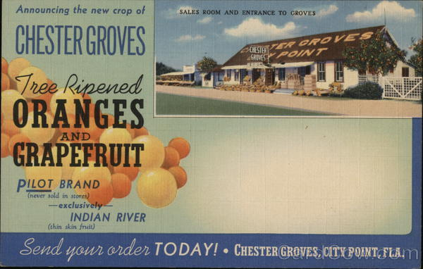 Chester Orange Groves City Point Florida