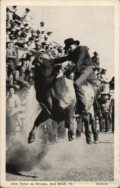 Glen Tyler on Droopy, Red Bluff 1941 Rodeos