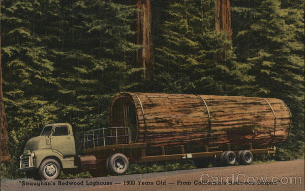 Straughan's Redwood Loghouse-1900 Years Old-From California's Redwood Empire Chatsworth