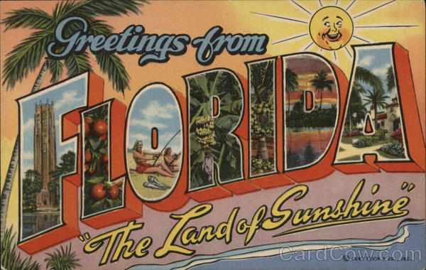 Greetings from Florida - The Land of Sunshine Large Letter