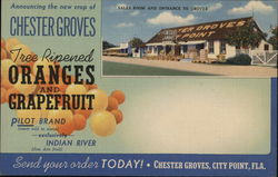 Chester Orange Groves
