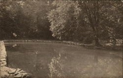 Saint Mary's School, Mount Saint Gabriel - The Pond
