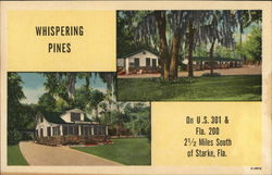 Whispering Pines Guest Cottages Postcard