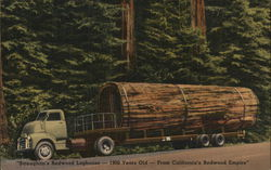 Straughan's Redwood Loghouse-1900 Years Old-From California's Redwood Empire