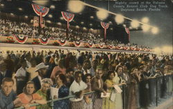 Volusia County Kennel Club - Grandstand Crowds