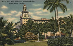 Roney Plaza Hotel from Collins Park